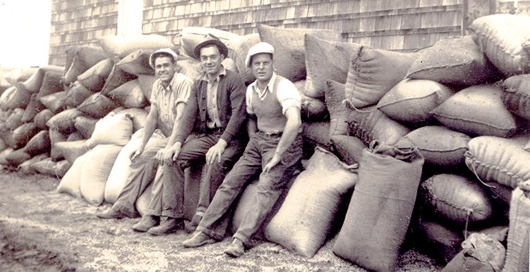 men sitting on potato sacks
